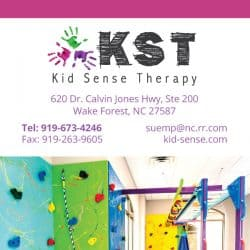 Kids Therapy Physical Therapy Rack Cad Back
