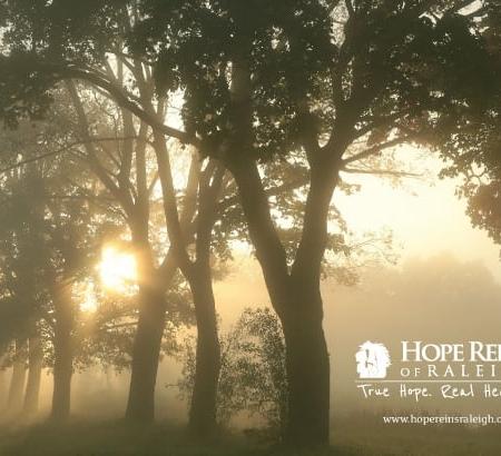 Hope Reins Non Profit Brochure Design Inside