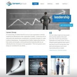 Larsen Group Executive Coaching Web Design & Developement